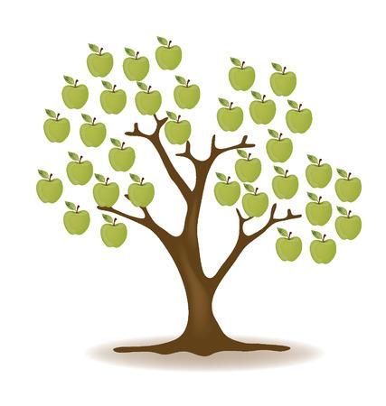 broad leaved tree: Apple tree  vector illustration