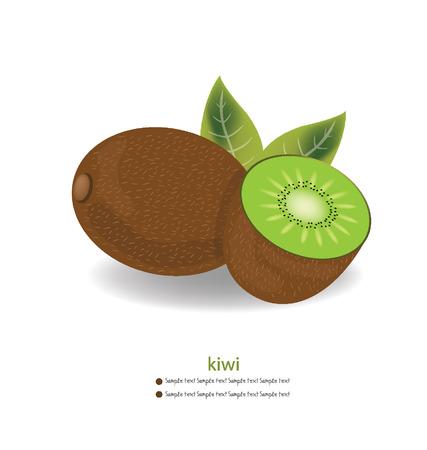 garden stuff: Kiwi vector illustration Illustration