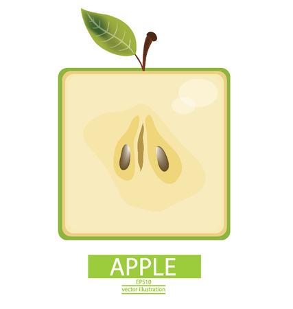green apple slice: Apple fruits vector illustration