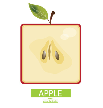 Apple fruits vector illustration Vector