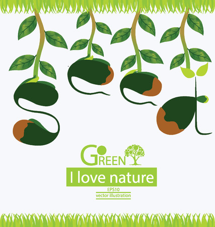 Seed, Go green, Save world vector illustration Vector