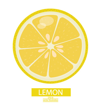 Lemon fruits vector illustration Vector