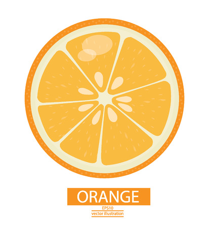 orange cut: Orange fruits vector illustration