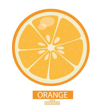 Oranje vruchten vector illustratie