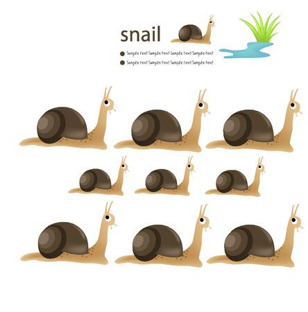 cling: Snail vector illustration