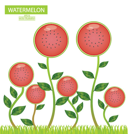 Watermelon, tree vector illustration Vector