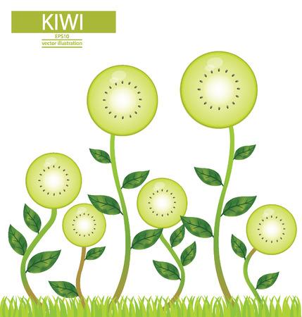 garden stuff: Kiwi, tree vector illustration