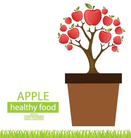 broad leaved tree: Jardiniere, Apple tree vector illustration Illustration