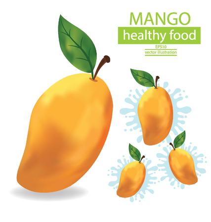 mango juice: Mangoes fruit illustration on white background Illustration