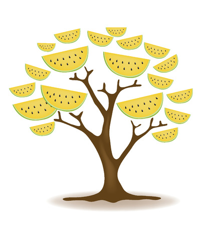 Watermelon tree illustration Vector