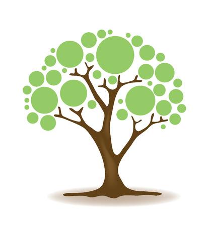 broad leaved tree: tree illustration