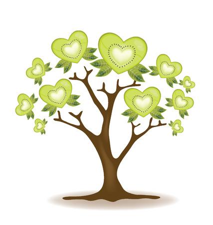fruitage: Kiwi tree vector  Illustration