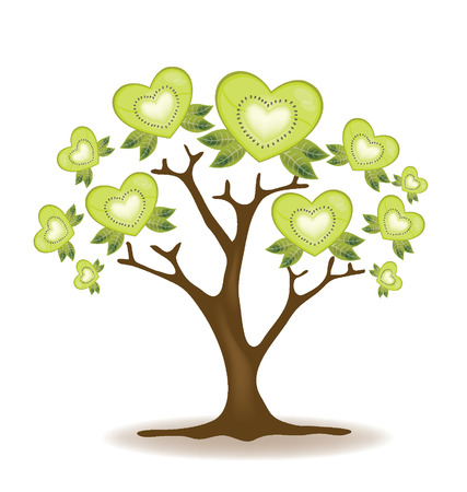 Kiwi tree vector  Illustration