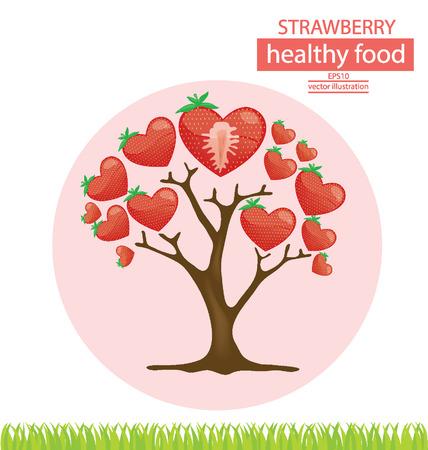 broad leaved tree: strawberry tree vector