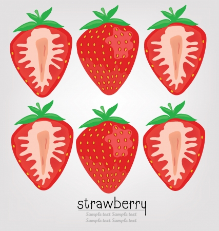 strawberry vector illustration Vector