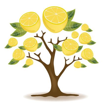 лимоны дерево векторные иллюстрации Иллюстрация