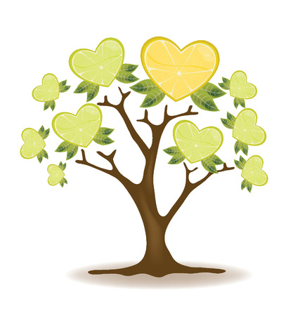 leaved: lemons tree illustration
