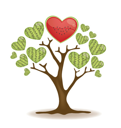 leaved: watermelon tree illustration