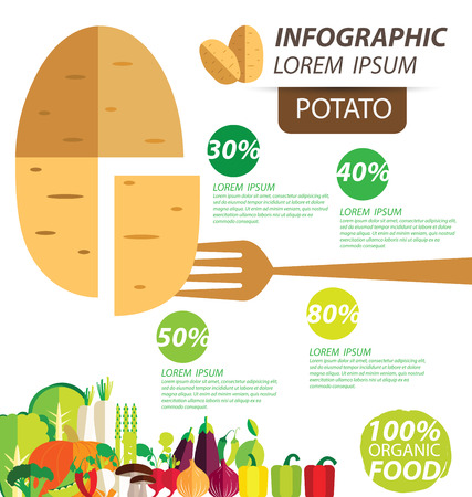 information  isolated: potato , infographics. vegetables vector illustration