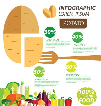 potato: potato , infographics. vegetables vector illustration