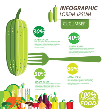 cucumber , infographics. vegetables vector illustration Illustration