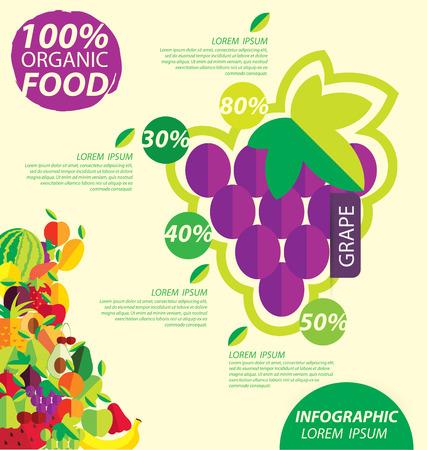 grape, infographics. fruits vector illustration. Vector