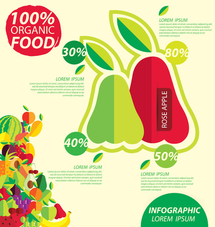 rose apple, infographics. fruits vector illustration. Vector