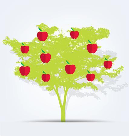 bole: apple tree vector illustration