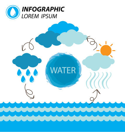 condense: water cycle infographics