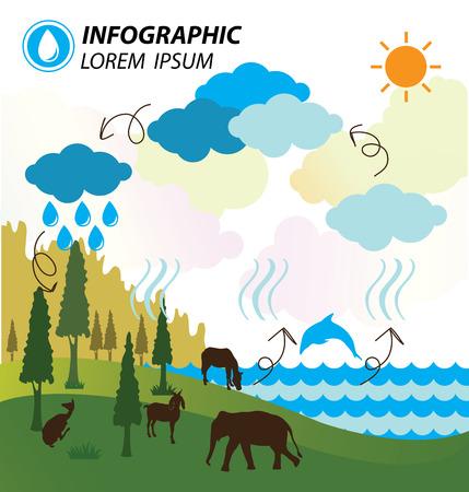 ciclo del agua: Infograf�a del ciclo del agua