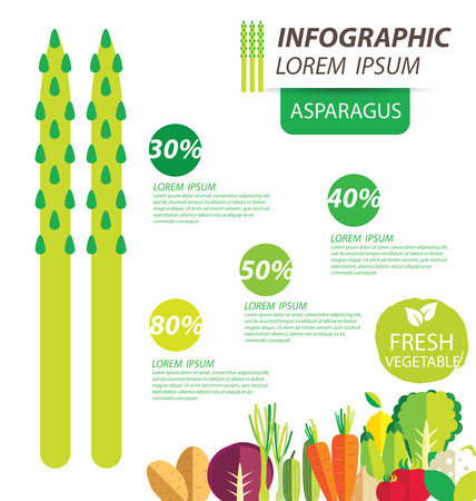 asparagus: asparagus , infographics. vegetables vector illustration