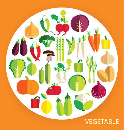 vegetables vector illustration Vector