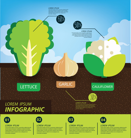 vegetables infographics vector illustration Vector