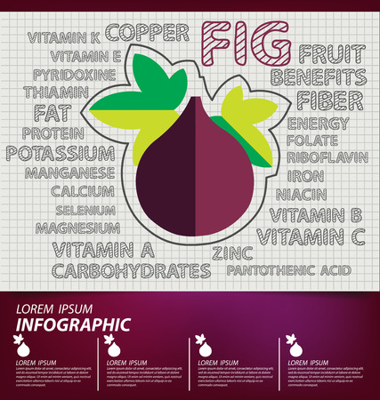 fig: fig, infographics. fruits vector illustration.