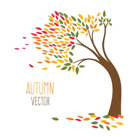 autumn tree: autumn tree vector
