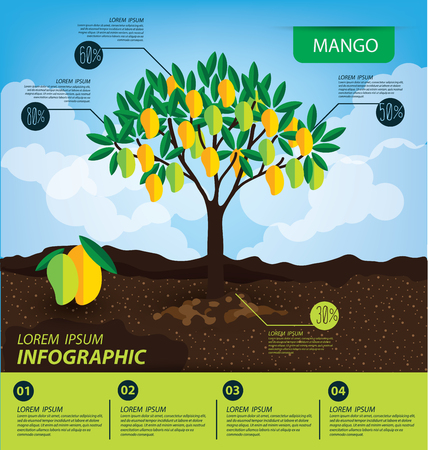 mango, infographics. fruits vector illustration. Çizim