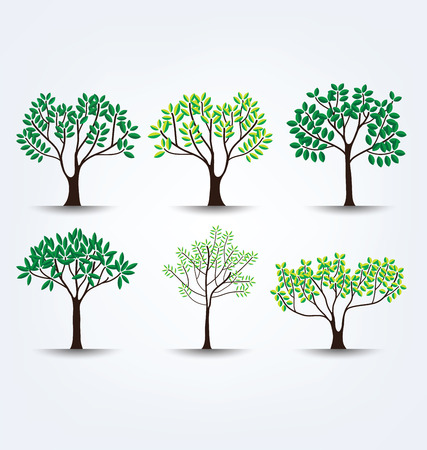 illustration isolated: Tree vector illustration