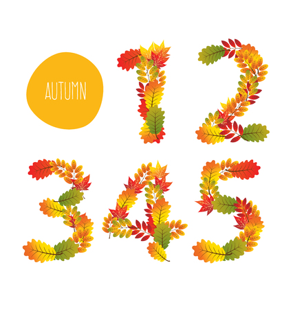 set symbols: Numbers of autumn leaves collection. Illustration