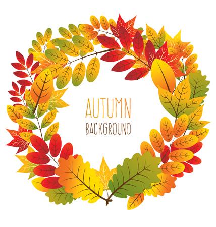 autumn background: autumn leaves background