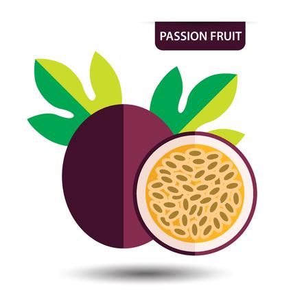 passion fruit, fruit vector illustration