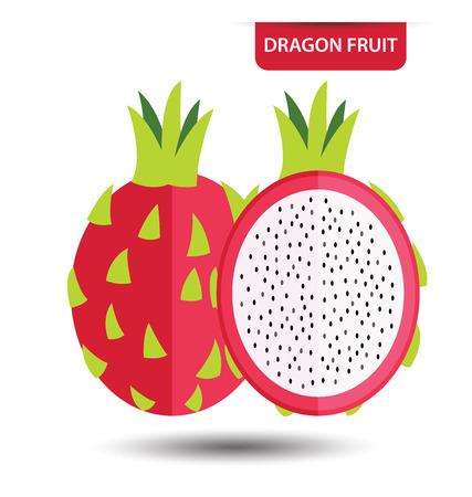 ilustración vectorial fruta del dragón