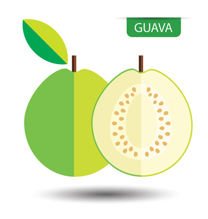 guava fruit: Guava, fruit vector illustration