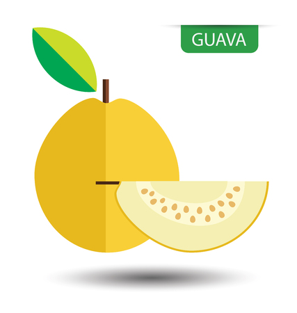 guava fruit: yellow guava, fruit vector illustration