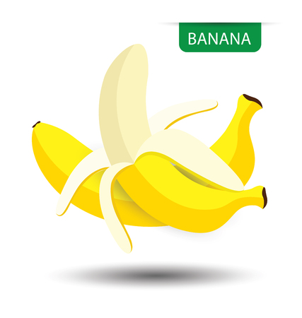 Banana, fruit vector illustration