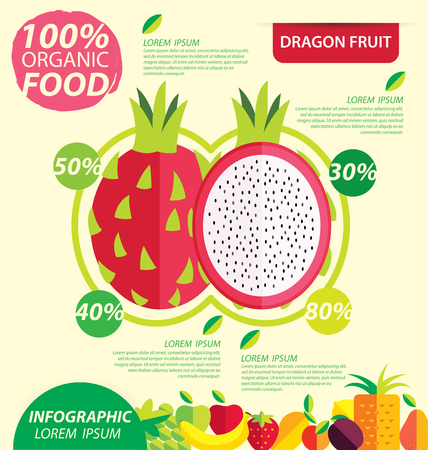 Dragon fruit. Infographic template. vector illustration.