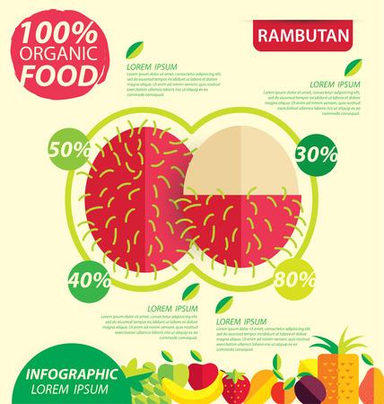 rambutan: Rambutan. Infographic template. vector illustration.
