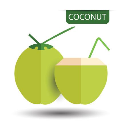 copra: Coconut, fruit vector illustration Illustration