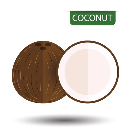 Coconut, fruit vector illustration Illustration