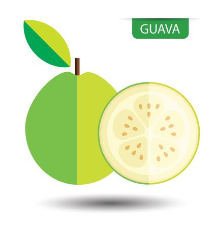 Guava, fruit vector illustration