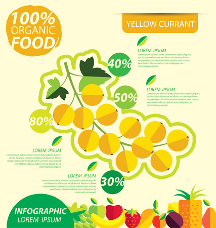 currant: Yellow currant. Infographic template. vector illustration. Illustration